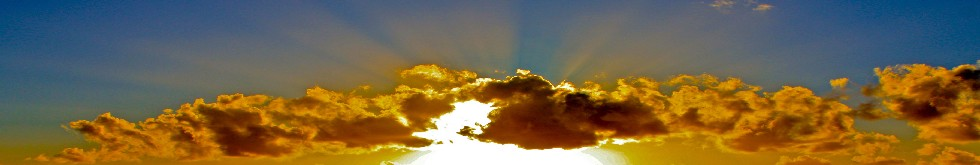 cellodad